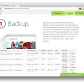 BackupBuddy Plugin Demo Screenshot-1
