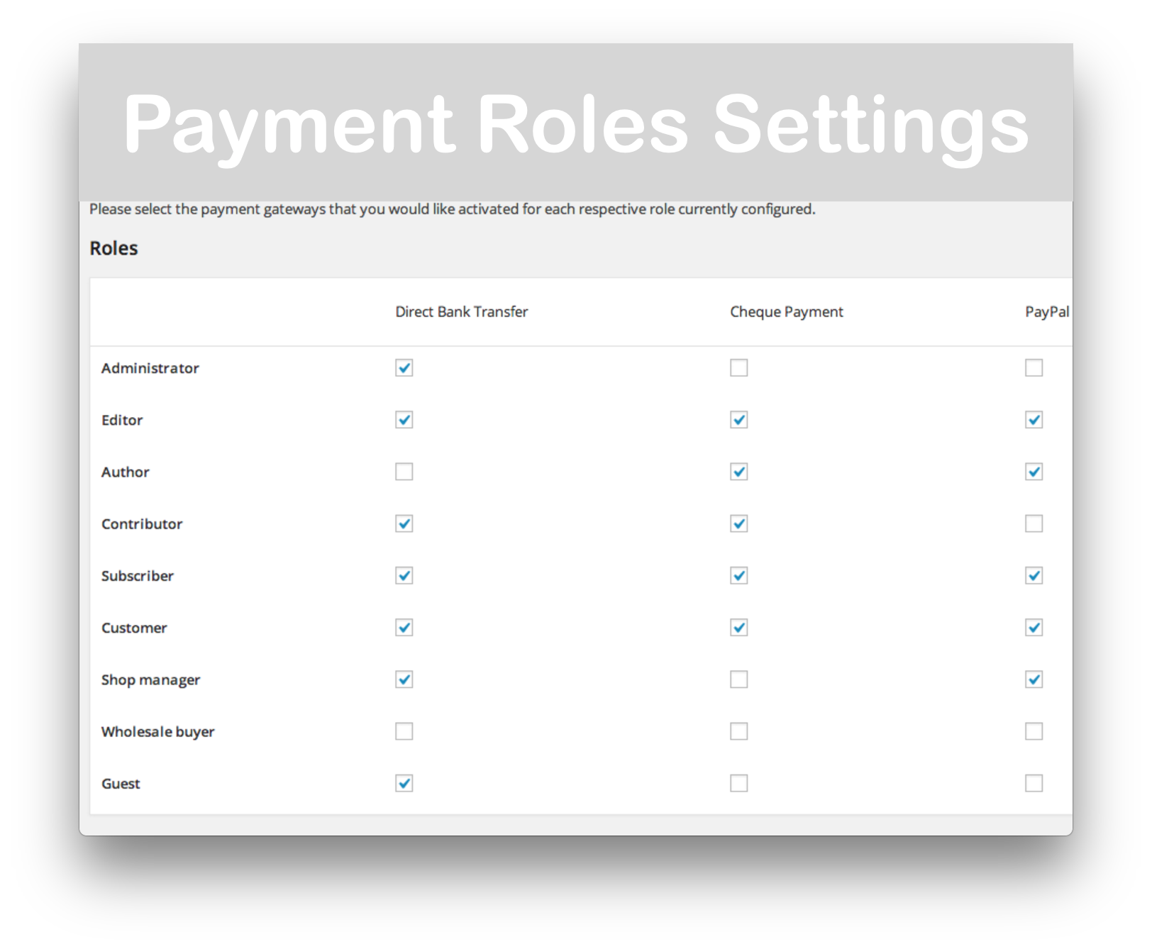 WooCommerce Role Based Payment : Shipping Methods- Payment Groups Demo