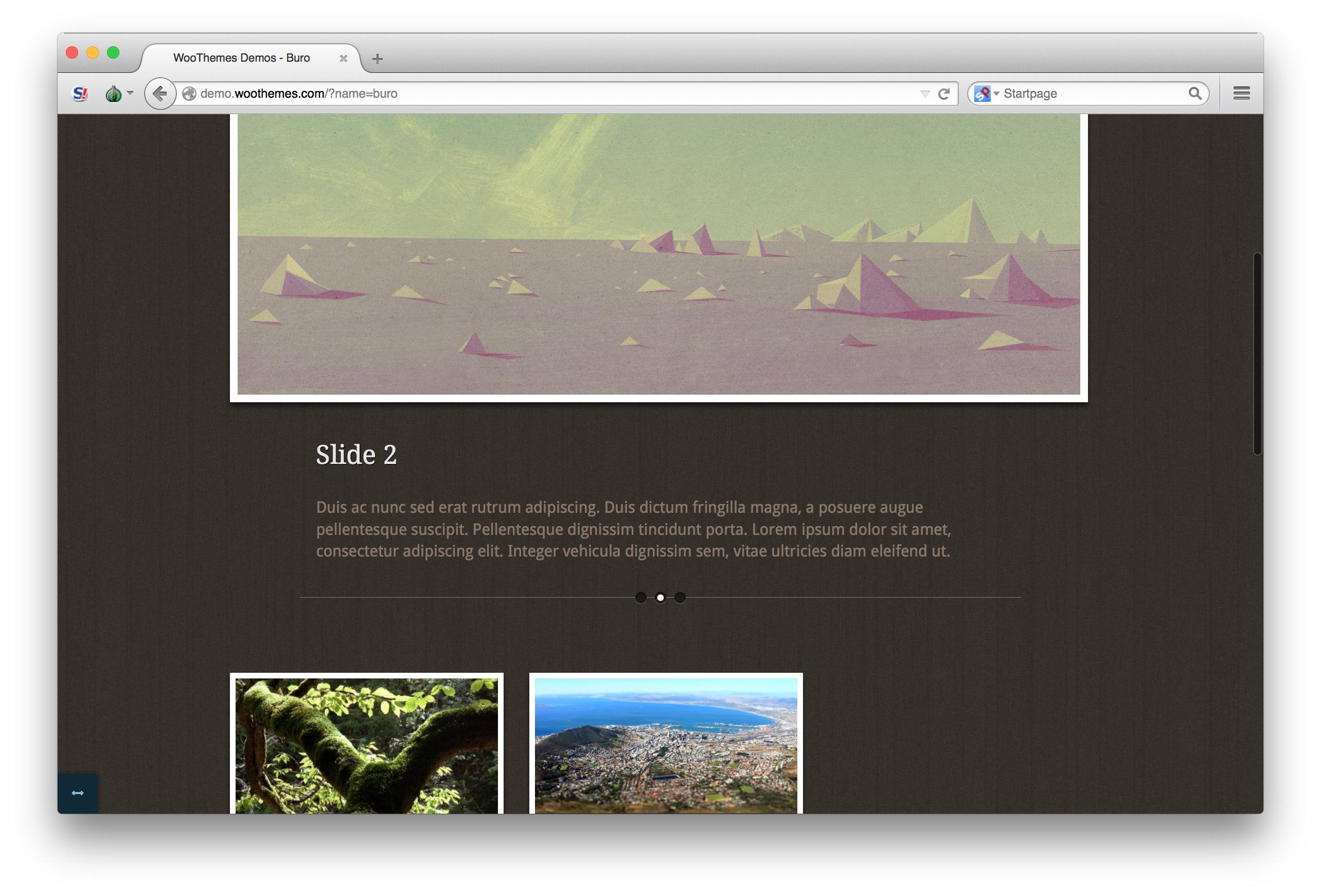 Woothemes buro theme homepage demo bottom for Buro premium