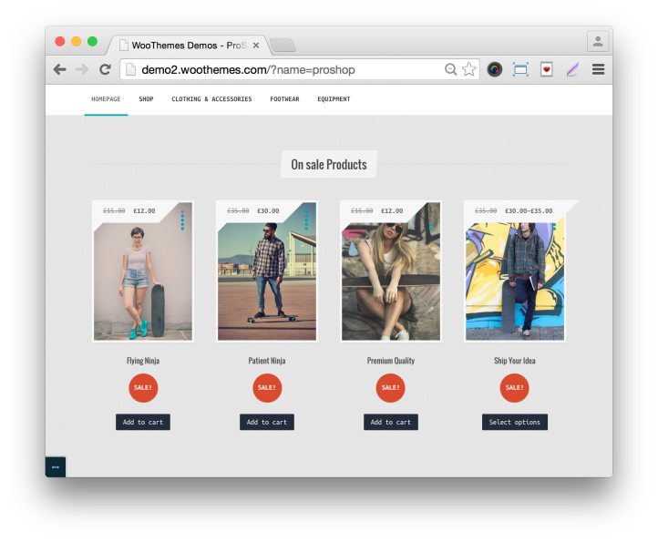 WooThemes ProShop Theme Home Demo On Sale