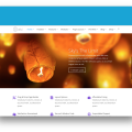 Divi Theme by Elegant Themes- Demo