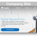 WooCommerce Paypal Pro Plugin- Company Site