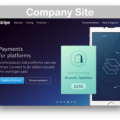 WooCommerce Stripe Payment Gateway Extension- Company Site