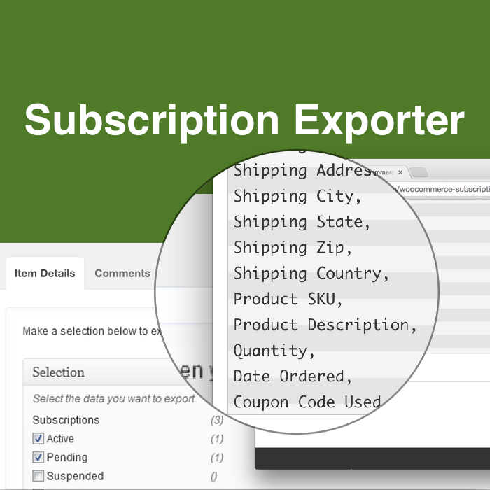 WooCommerce Subscription Exporter Demo Plugin