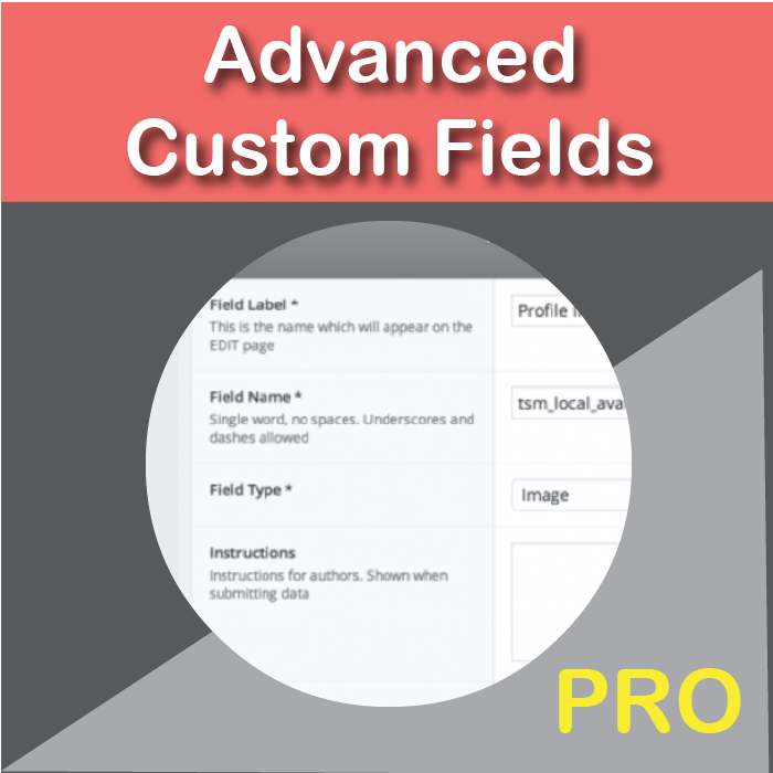 Advanced Custom Fields Pro Plugin (ACF)