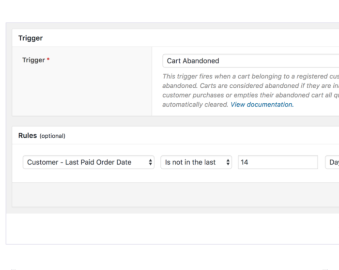 WooCommerce AutomateWoo Plugin Demo -Abandoned Cart