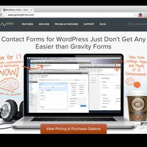 Gravity Forms For Wordpress Screenshot