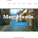 WPspring WooThemes Hustle
